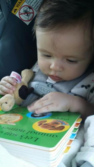 Board books definitely make the list for the bag of tricks. Eloise loves looking at the pictures.