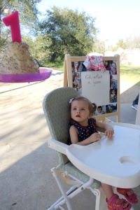 Hard to believe her first birthday party has already come and gone!