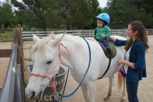 Who knew you could put a baby, I mean toddler, on a horse? Yet another reason getting bigger is a lot of fun!